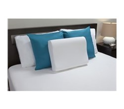 Sealy Memory Foam Pillows comfort revolution f01 00076 cp0