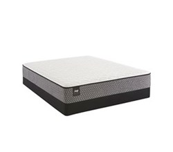 Sealy Twin Size Firm Mattress and Box Spring Set  sealy smb bernstein f tt