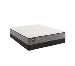 Sealy Twin Size Plush Mattress and Box Spring Set  sealy smb bernstein pl tt